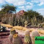 Kebun Binatang dan Taman Margasatwa Terbaik di Arizona