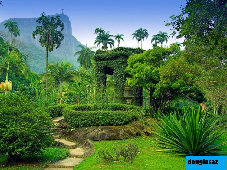 10 Kebun Raya Yang Indah Di Arizona