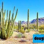 12 Taman dan Monumen Nasional Terbaik di Arizona