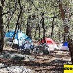 12 Perkemahan dengan Nilai Tertinggi di Arizona